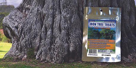 IronTreeTreats_LifeShot_Web.jpg