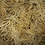 Thumbnail: Pound of Raw and Wildcrafted Irish Sea Moss