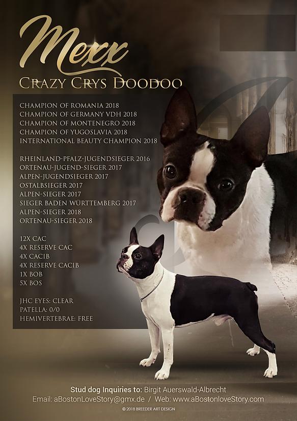 Stud Dog Mexx o. Boston Bay.png