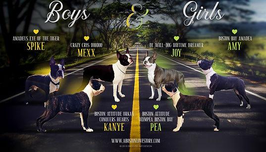 Boys & Girls o. Boston Bay.jpg