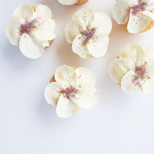 Mini Floral Cupcakes