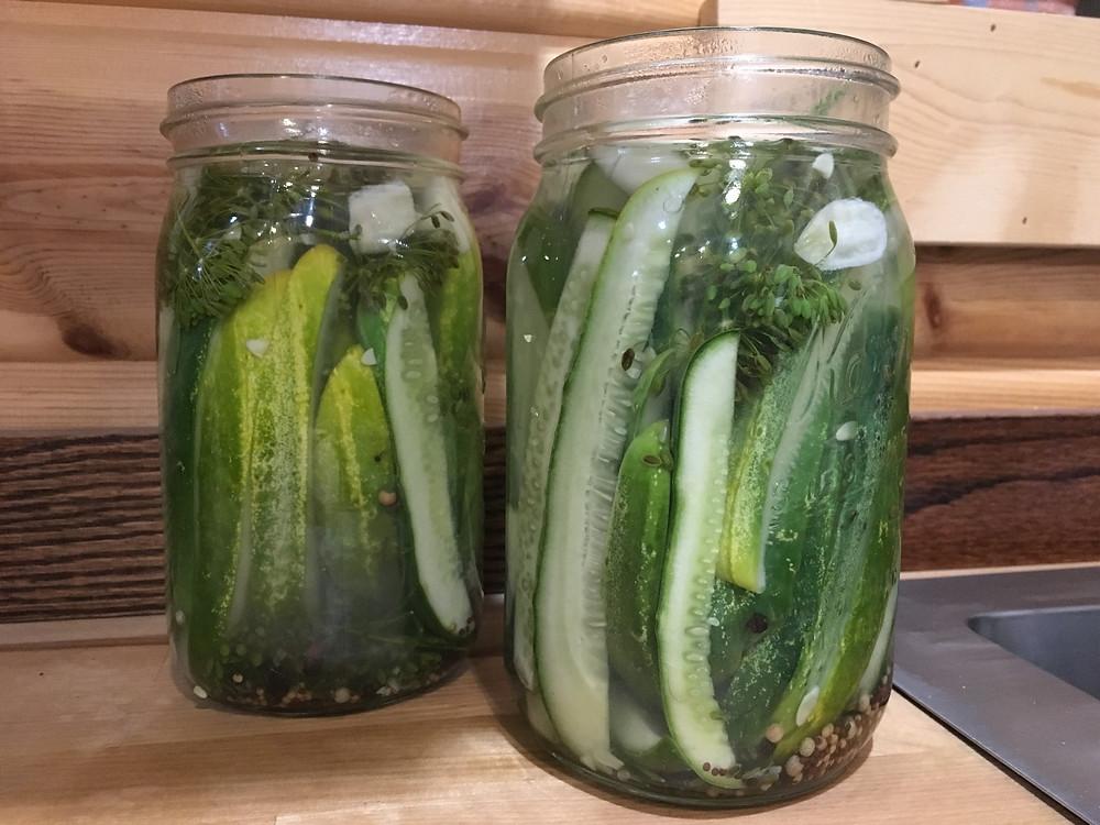 Dill Pickles in clear quart jars