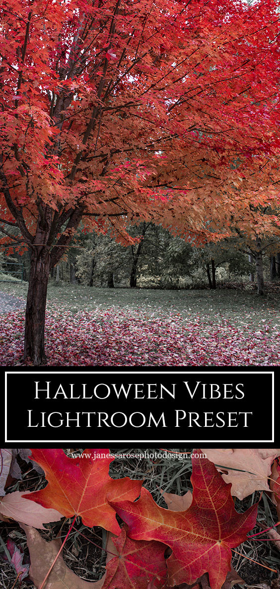 Halloween Vibes Lightroom Preset free download above