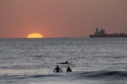 SICK+DOLPHIN+SURFING+SHOT.jpg