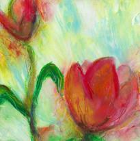 Adonna Ebrahimi Tulip 03 72dpi.jpg