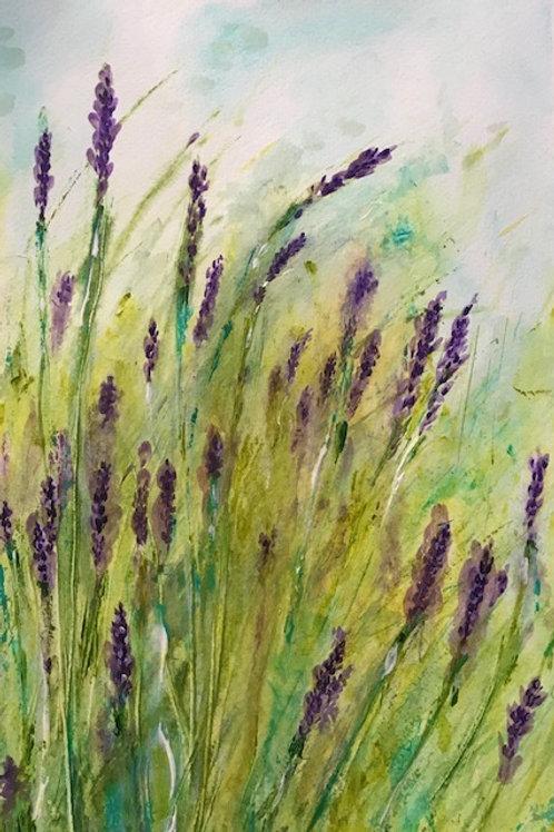 """""""Lavender"""" Color Print 8 """" x 10"""""""
