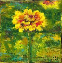 sunflower 300.jpg