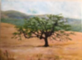 The Mighty Oak Adonna Ebrahimi.jpg