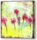 Screen Shot 2020-04-27 at 4.29.15 PM.png