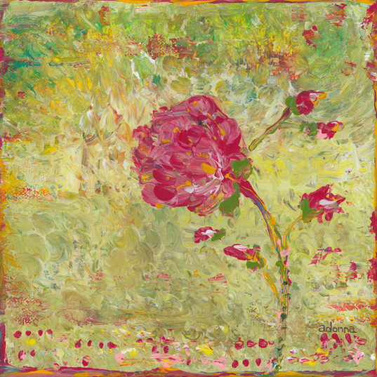 Pink blossom.jpg
