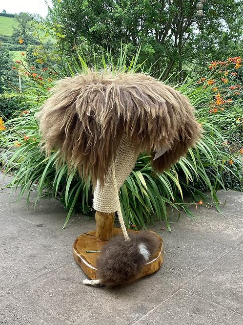 Daisy Cat Tree with Rodney Rat ref 6321