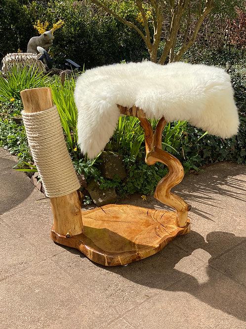 2021 Wind River Cat Tree