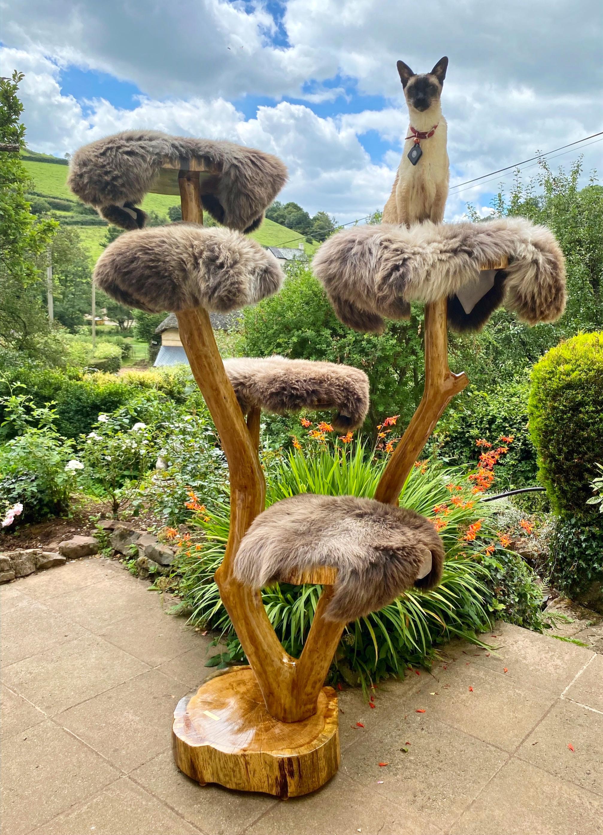 Large Cat Trees