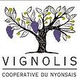 logo vignolis_edited.jpg