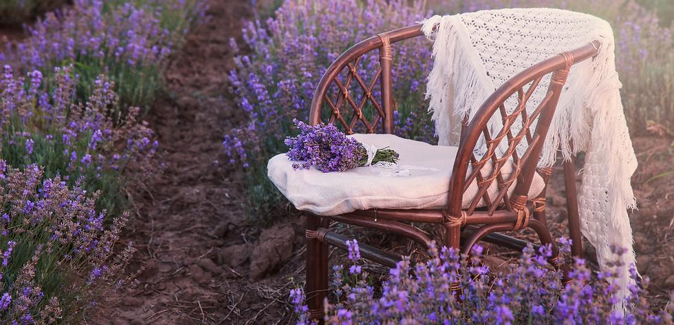 Chair l blanket l field