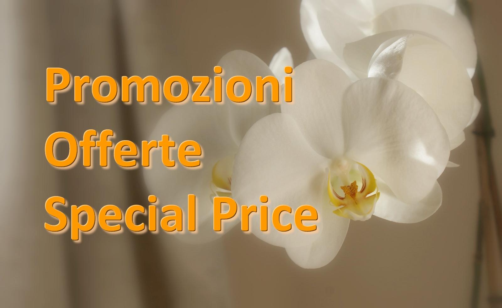 special price 1.jpg