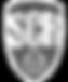 Logo_SCR_def Kopie_bearbeitet.png