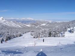 Shiga Kogen Heights Ski Resorts