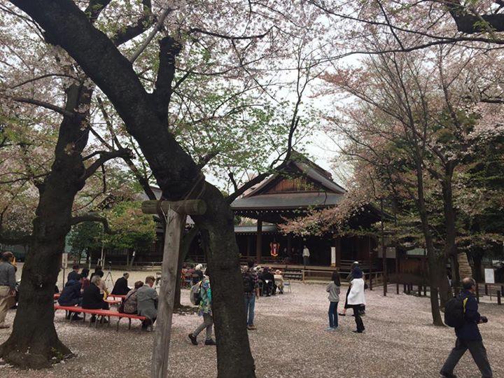 Yasukuni Shrine (靖国神社)
