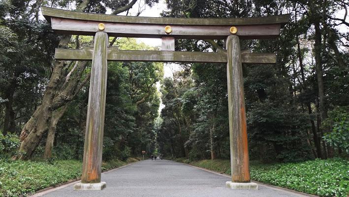 Yoyogi Park (代々木公園)