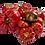 Thumbnail: Lote de 3 botes tomate triturado eco