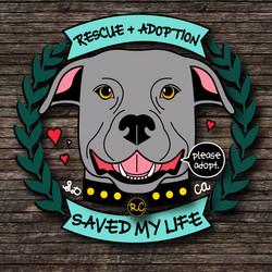 Rufus Carlin for adoption.