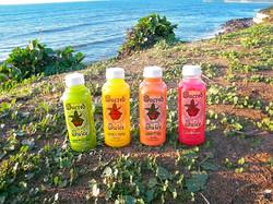 Sacred Juice Company. All flavors.