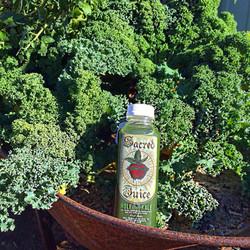 Sacred Juice Company. Holy Kale.