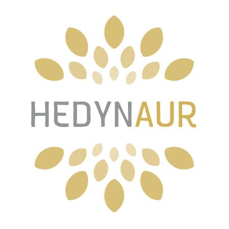 logo_hedyn aur.jpg