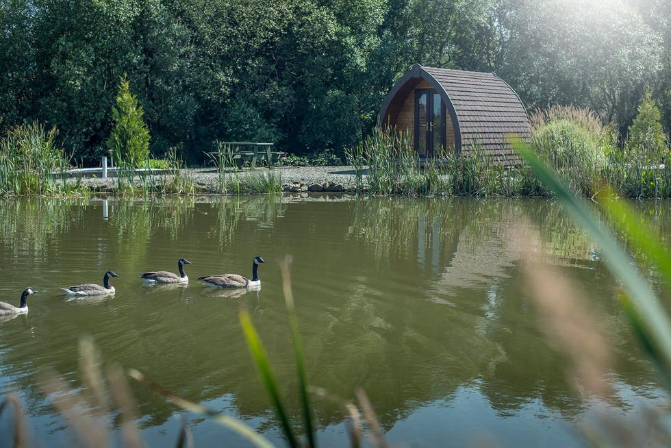 Maerdy Farm Cottages077.jpg