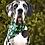 Thumbnail: St. Patricks Dog Bandana