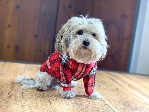 Red Tartan Dog Shirt and Adult Pajamas