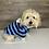 Thumbnail: Blue Stripe Hoodie