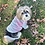 Thumbnail: Pink and Sage Tie Dye Dog Shirt and Adult Pajamas