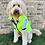Thumbnail: Reversible Vest in 2 colors