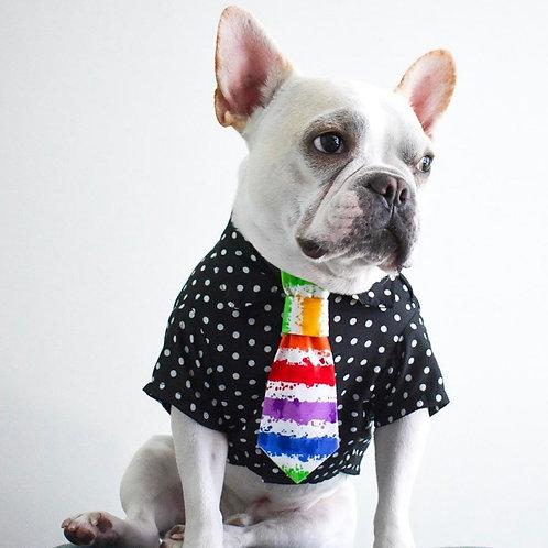Pride Neck Tie