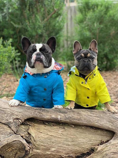 Yellow Rainbow Dog Raincoat