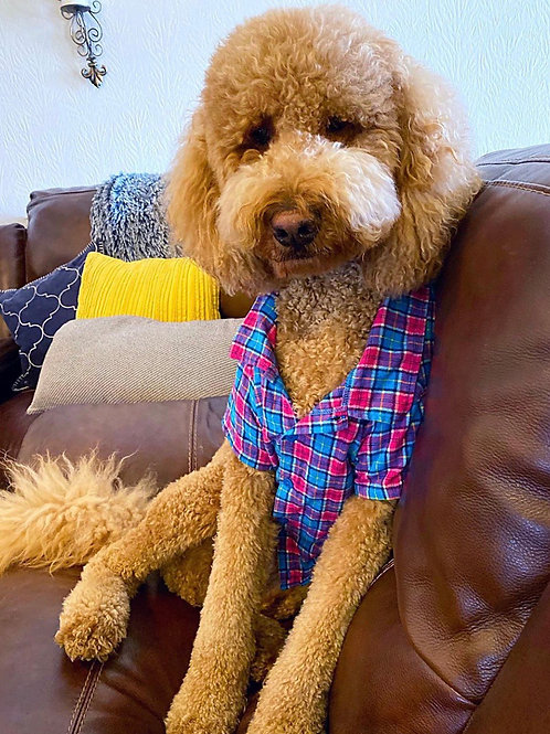 Pink and Blue Plaid Flannel