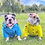 Thumbnail: Yellow Rainbow Dog Raincoat