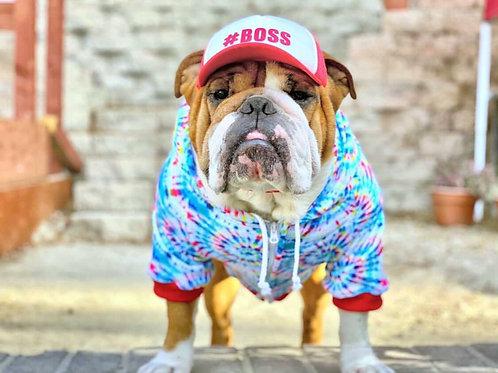 Tie Dye Dog Hoodie