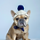 Thumbnail: Navy and Oatmeal Crocheted Dog Beanie with Pom Pom
