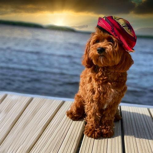 Sunset Bucket Hat