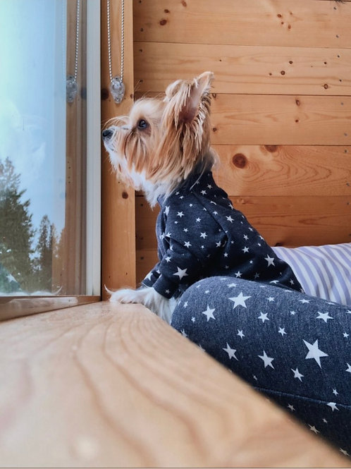 Midnight Stars Dog Shirt and Adult Pajamas