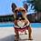 Thumbnail: Sunset  Dog Tank Top