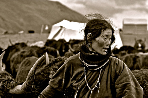 Omu the Great - Litang, Sichuan