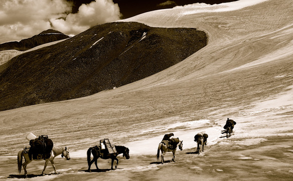 Caravan - Ladakh