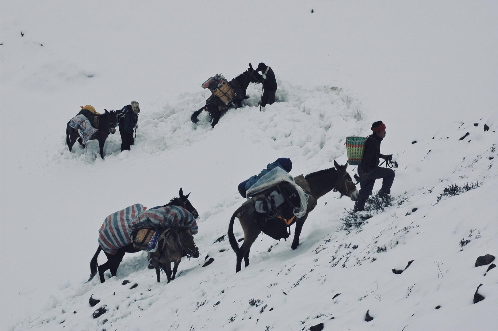 The Climb - Yunnan