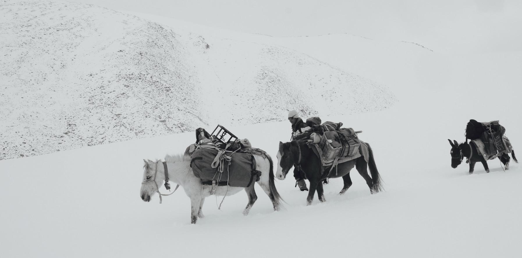 White Pass - Ladakh