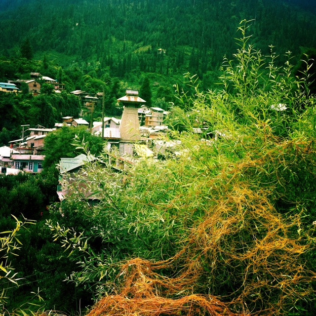 A little bit of Manali's charm from the old town