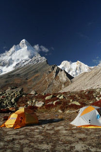 Tapovan Camp